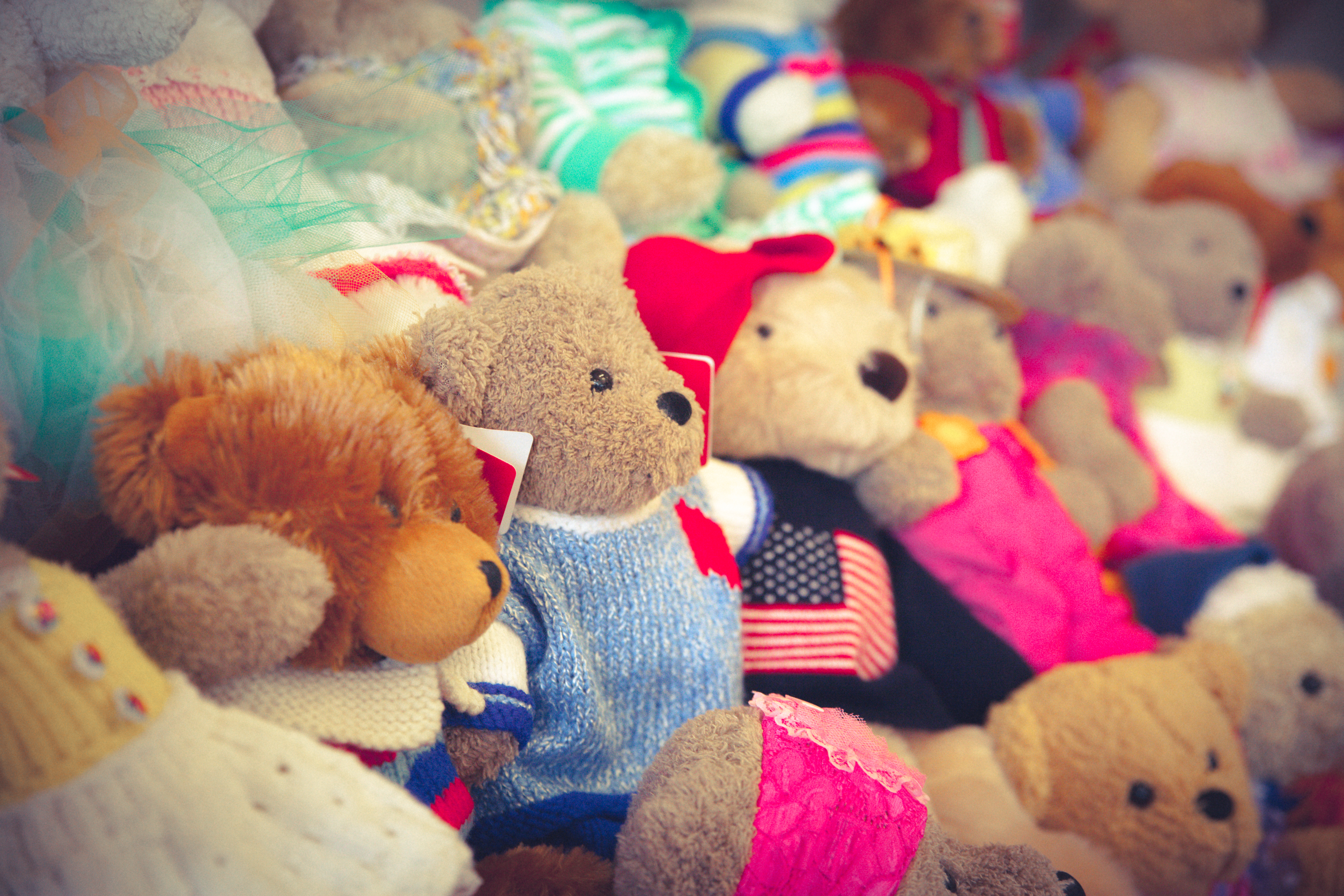 Bears in the boutique await their new owners at the annual Teddy Bear Tea event.