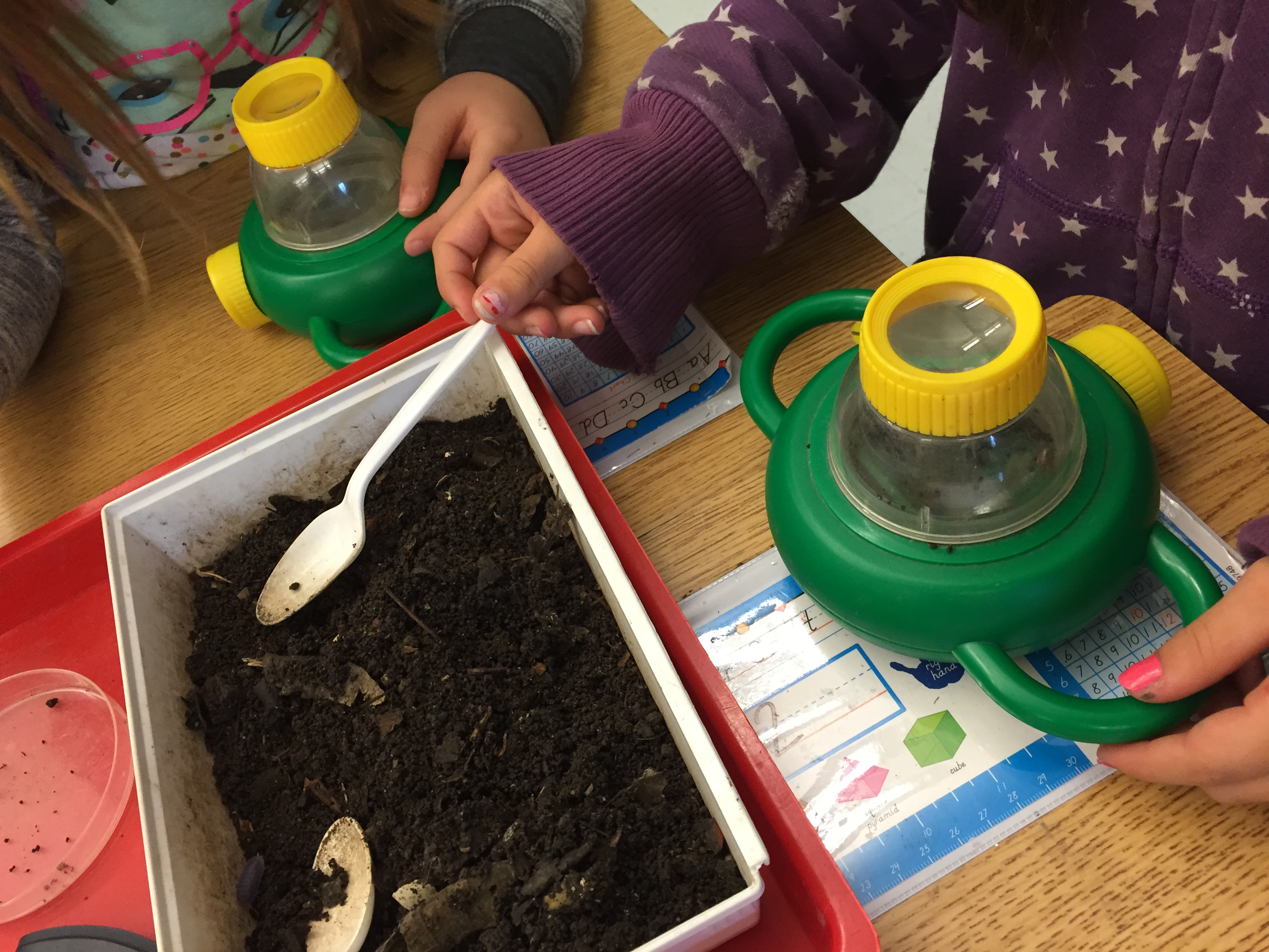 Students investigate soil and learn about composting in our Natural Science Classroom