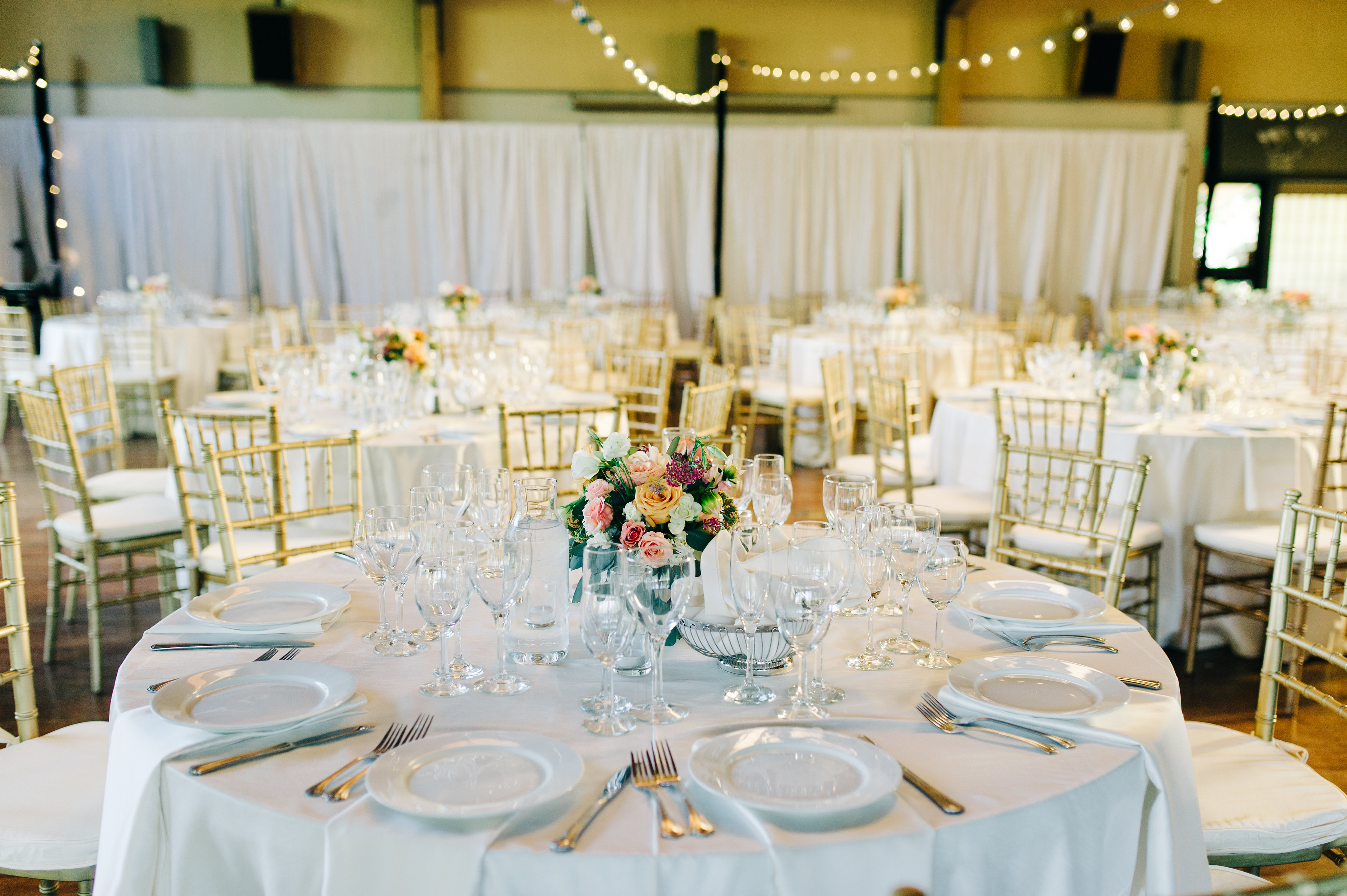 wedding, couple, bride, groom, garden, venue, reception