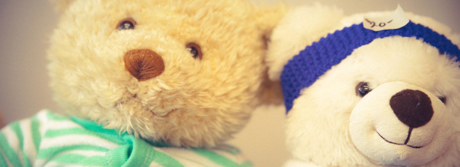 teddy, bear, tea, holiday, family, event