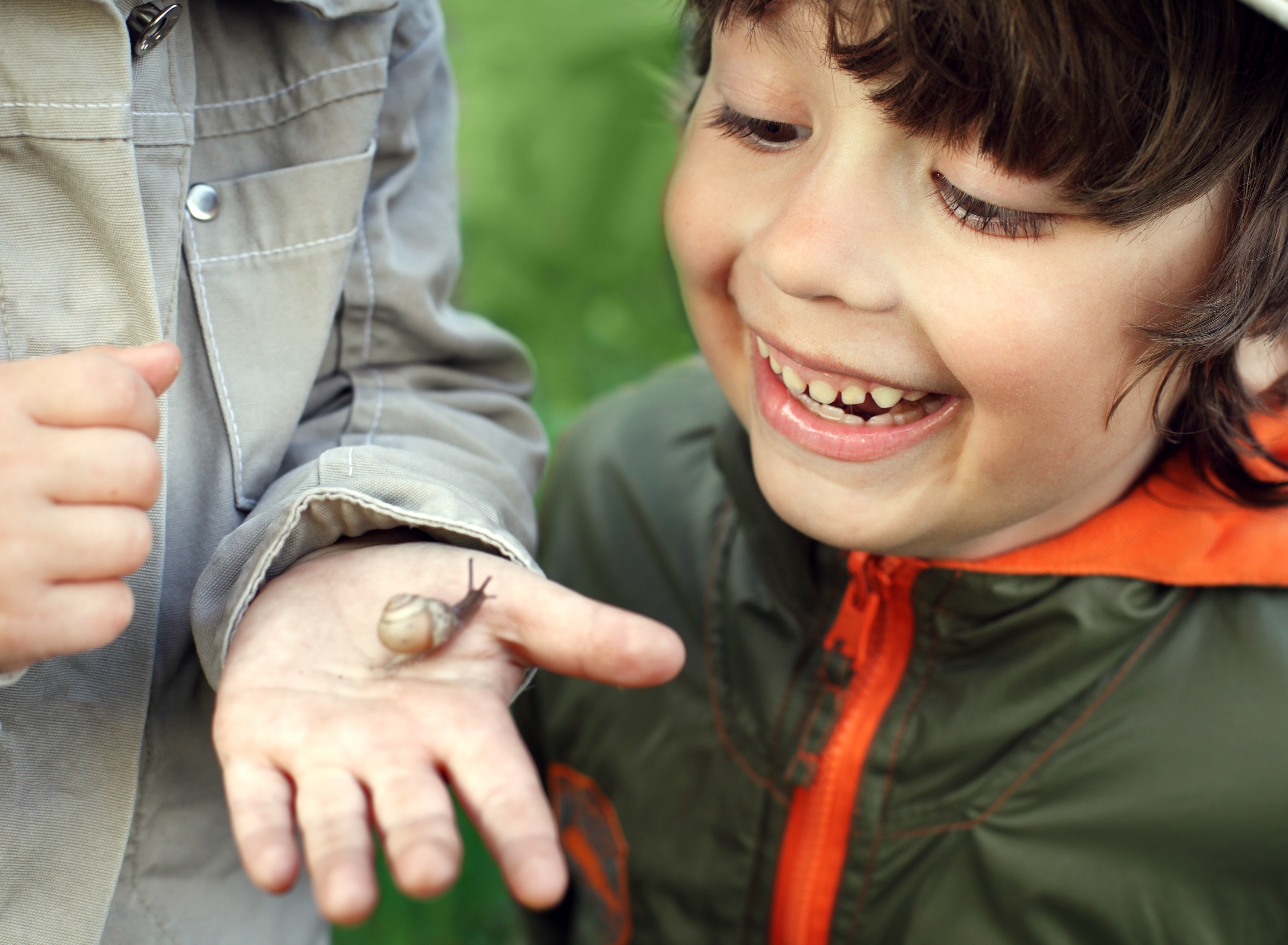 bug, nature, child, boy, snail, insect